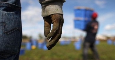 Immigrati sfruttati nelle campagne di Marsala e Mazara per 3 euro all'ora: due arresti