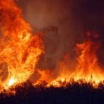 La Sicilia che brucia e le cifre della vergogna