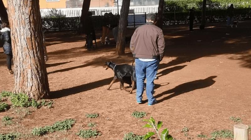 Villa Sperlinga fa felici i cani