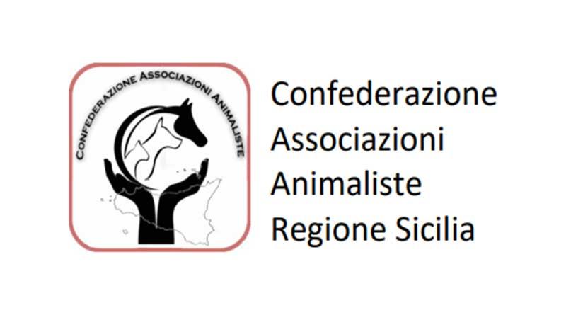 Nata la prima aggregazione tra associazioni animaliste siciliane