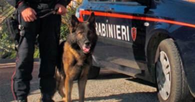 Siracusa, arrestato un uomo in zona Santa Panagia, Carabinieri sequestrano armi, droga e denaro