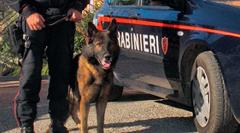Carabiniere con cane