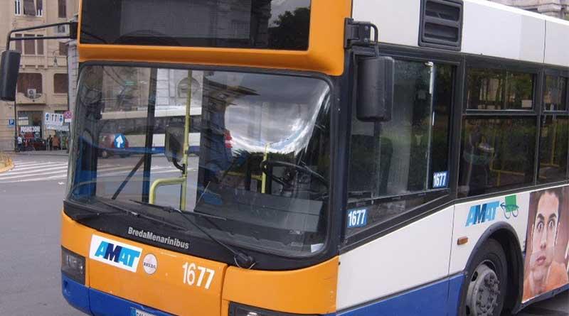 autobus Amat