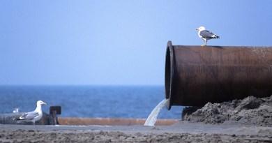 LSanfratello depurazione acque 'Ue sanziona l'Italia per la depurazione delle acque reflue: multa da 25 milioni di euro. In Sicilia il 18% dei depuratori non è neanche attivo