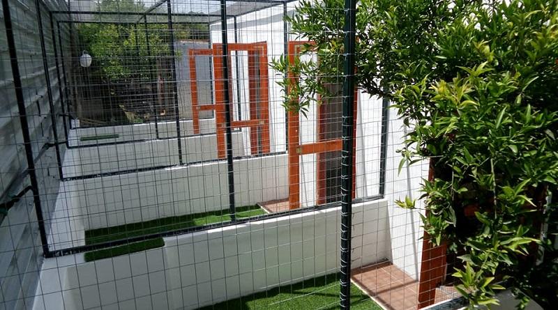 Ediga (Ente difesa Gatti),associazione privata no- profit che opera presso il gattile di Palermo di via Pandolfini, ha presentato il suo Black & White Cat Hotel, una pensione per gatti i cui proventi saranno reinvestiti per le esigenze del Rifugio del Gatto