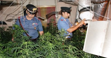 Villetta trasformata in piantagione di canapa a Casteldaccia: un arresto