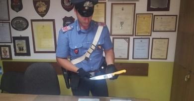 Ha aggredito una donna di 51 anni con un grosso coltello da cucina, colpendola alla fronte. I Carabinieri hanno arrestato una palermitana di 50 anni per tentato omicidio
