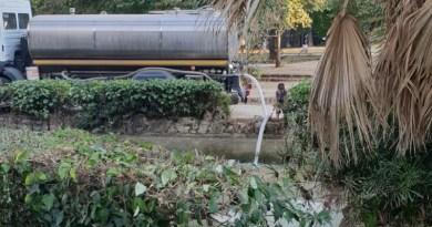 Villa Sperlinga pesci vasca riempita d'acqua