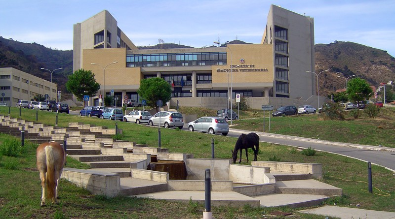 Dipartimento di Veterinaria dell'Università di Messina