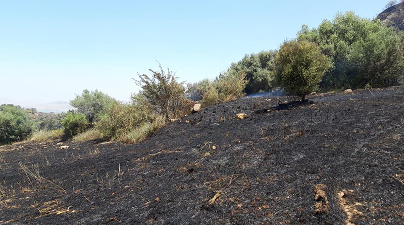 Incendio Area archeologica di Morgantina