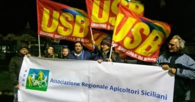 Protesta apicoltori siciliani contro Ogm