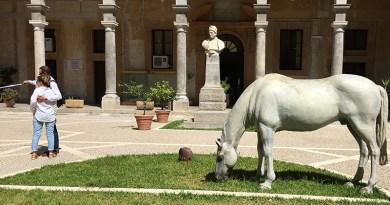 """Palermo, lunedì riapre la Biblioteca centrale della Regione. I sindacati: """"Cessato il rischio di contagio per personale e utenti?"""""""
