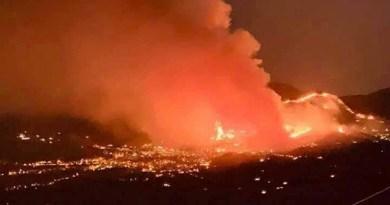 Incendi, migliaia di ettari devastati in Sicilia. Danni incalcolabili per l'agricoltura e per l'intero ecosistema