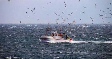 """Protesta pescatori italiani contro politiche UE: """"La cura per il Mediterraneo non è fermare la pesca"""""""