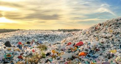 Discarica di plastica alle Maldive
