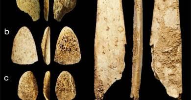 Manufatti ossei dell'uomo di Neanderthal