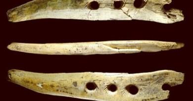 Strumento preistorico per realizzare corde