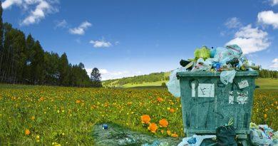 La plastica, utile ma inquinante
