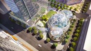 ARCHITETTURA E NATURA. Le tre biosfere sorgeranno al centro del complesso direzionale di Amazon.com, Inc., progettato dallo studio di architettura NBBJ e in corso di costruzione nel distretto amministrativo di Seattle: al loro interno sarà ospitato un articolato bioma locale. (Foto NBBJ)