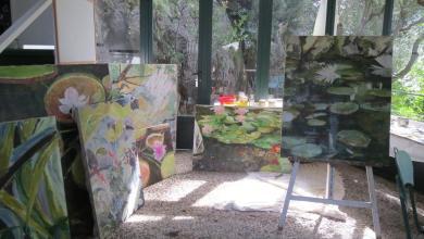 Photo of La Mortella e il museo di Villa Arbusto viaggiano a braccetto
