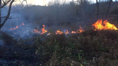 Photo of Cretaio, vasto incendio sulla collina di Buceto