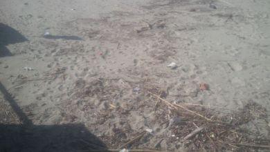 Photo of Spiaggia della Chiaia, a passeggio tra i rifiuti