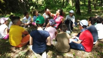 Photo of A scuola con la natura: iI Cannavale apre la tenuta ai bambini di Piedimonte