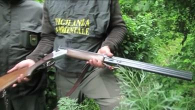 Photo of Bracconiere con armi clandestine, arrestato dalla Polizia