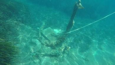 Photo of I fondali delle acque di Ischia monitorati dalla capitaneria