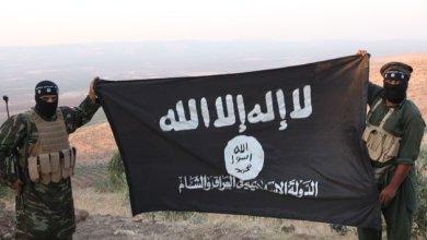 Photo of Ischia e la minaccia dell'Isis: siamo immuni al terrorismo?