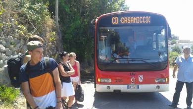 Photo of Panza, si ferma il bus: disagi per i turisti a bordo