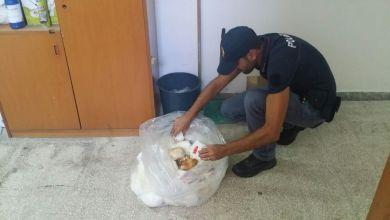 Photo of Latticini mal conservati, arriva la stangata della polizia
