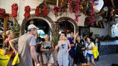 Photo of Andar per Cantine premia l'isola contadina, riconoscimenti all'Agrario e ai giovani imprenditori