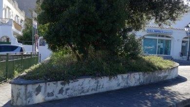 Photo of Ischia, piovono permessi a costruire
