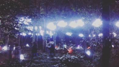 Photo of Natale a Ischia: la pineta Nenzi Bozzi diventa per incanto un giardino delle meraviglie