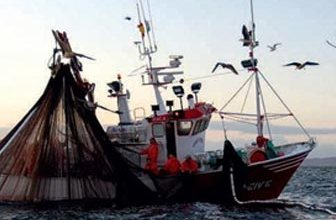 Photo of ISCHIA  Un progetto per migliorare punti di sbarco e ripari di pesca
