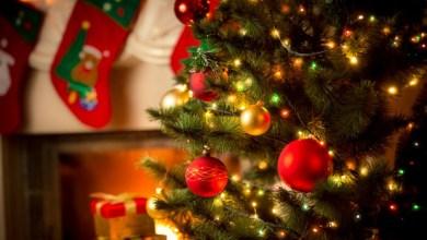Photo of Natale Insieme, tutti gli eventi del 27 dicembre