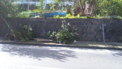 Photo of L'isola si interroga sulla tragedia, l'allarme: prevale il senso d'impotenza