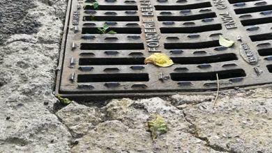 Photo of Casalauro e le erbacce in strada, relazionino i vigili urbani