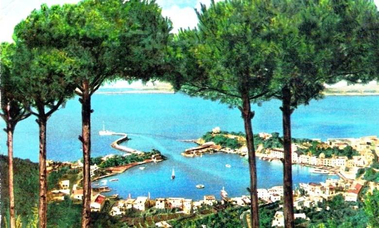 Risultato immagini per immagini dell'isola d'Ischia neglia anni 60