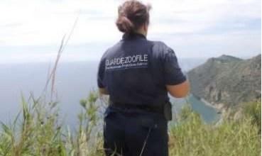 Photo of Bracconaggio, sull'isola fioccano denunce e sequestri
