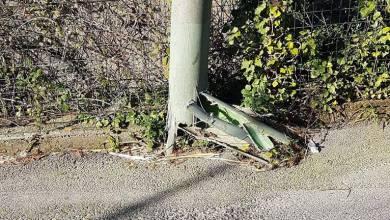 Photo of Montecorvo e i pali pericolanti, interviene la Telecom