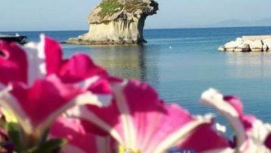 Photo of Benvenuta primavera, arriva un trionfo di colori e profumi