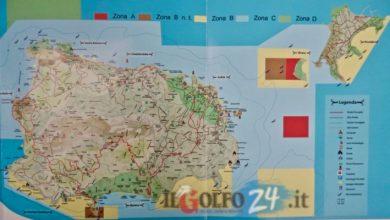 Photo of E' ufficiale: l'AMP 'Regno di Nettuno'  ricomincia dai Comuni. Tra scienza e politica  al Forum di Lacco Ameno