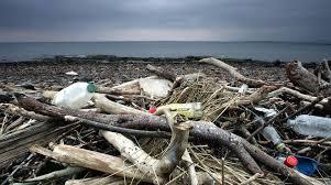 Photo of IL COMMENTO L'isola senza plastica che sposa il futuro