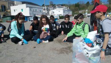 Photo of La Scuola Media Scotti diventa plastic free