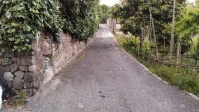 Photo of Paura ad Ischia, a due anni si allontana di casa: ritrovato dalla polizia