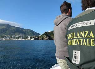 Photo of Campo antibracconaggio, il bilancio dei volontari del WWF sull'isola
