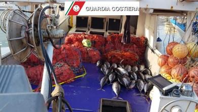Photo of Guardia Costiera, sequestrata rete da pesca illegale: era lunga 2 km