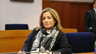 Photo of MARIA GRAZIA DI SCALA «Preoccupano le tempistiche, è una crisi di sistema»